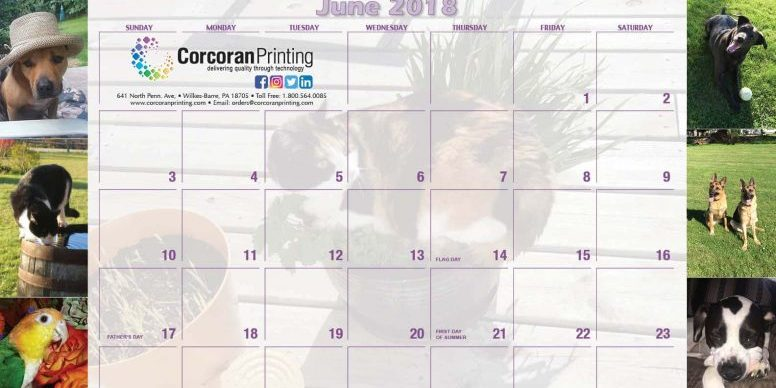 Custom printed calendars provide a full year of affordable advertising